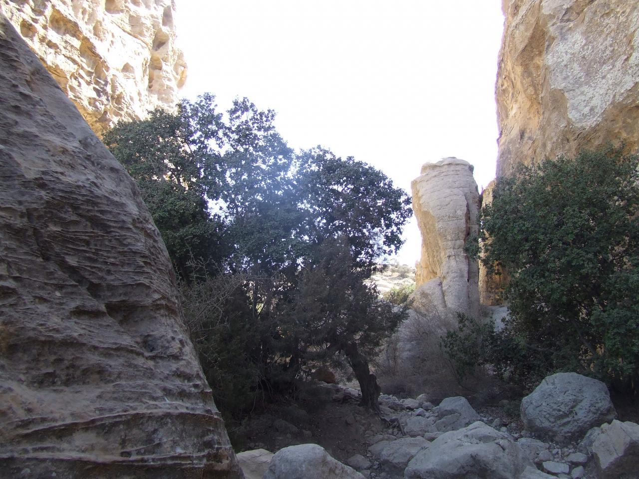 Réserve naturelle de Dana 1 (Jordanie)